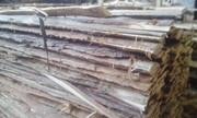 дрова с пилорамы