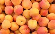 Домашние абрикосы оптом