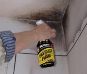 Чешское бесхлорное средство для ликвидации плесени Fungi Spray