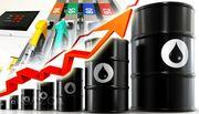 Продам дизельное топливо(ДТ Евро-5),  бензин А-95,  А-92 в опт/розница
