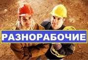 Разнорабочие,  подсобники в строительную фирму